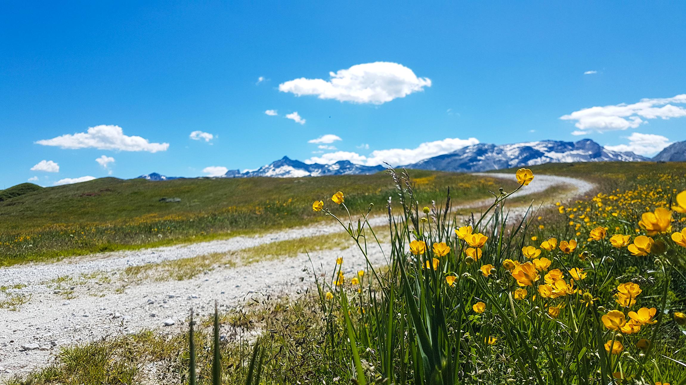 Paesaggio presso il Sentiero degli Andossi