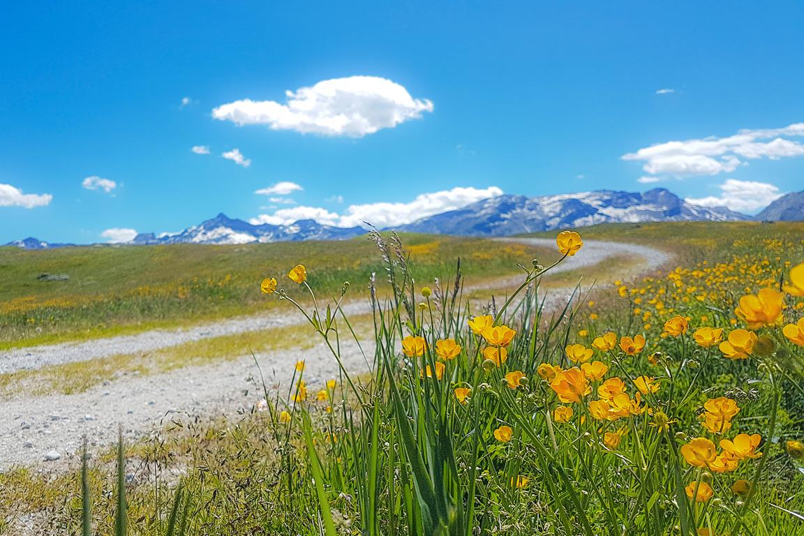 Valchiavenna: paesaggio presso il Sentiero degli Andossi