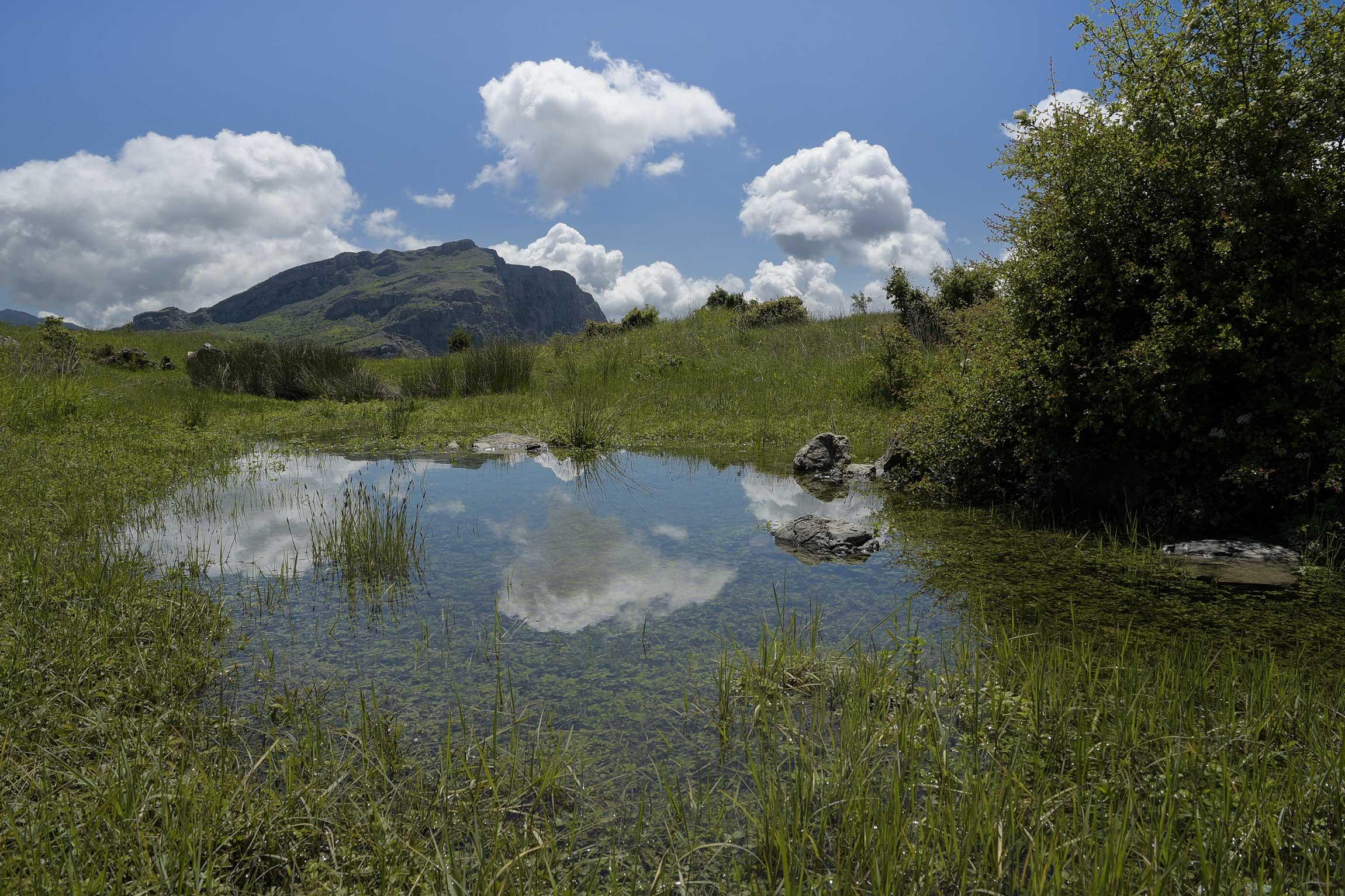 Turismo esperienziale in Calabria: godersi i paesaggi del Parco nazionale del Pollino