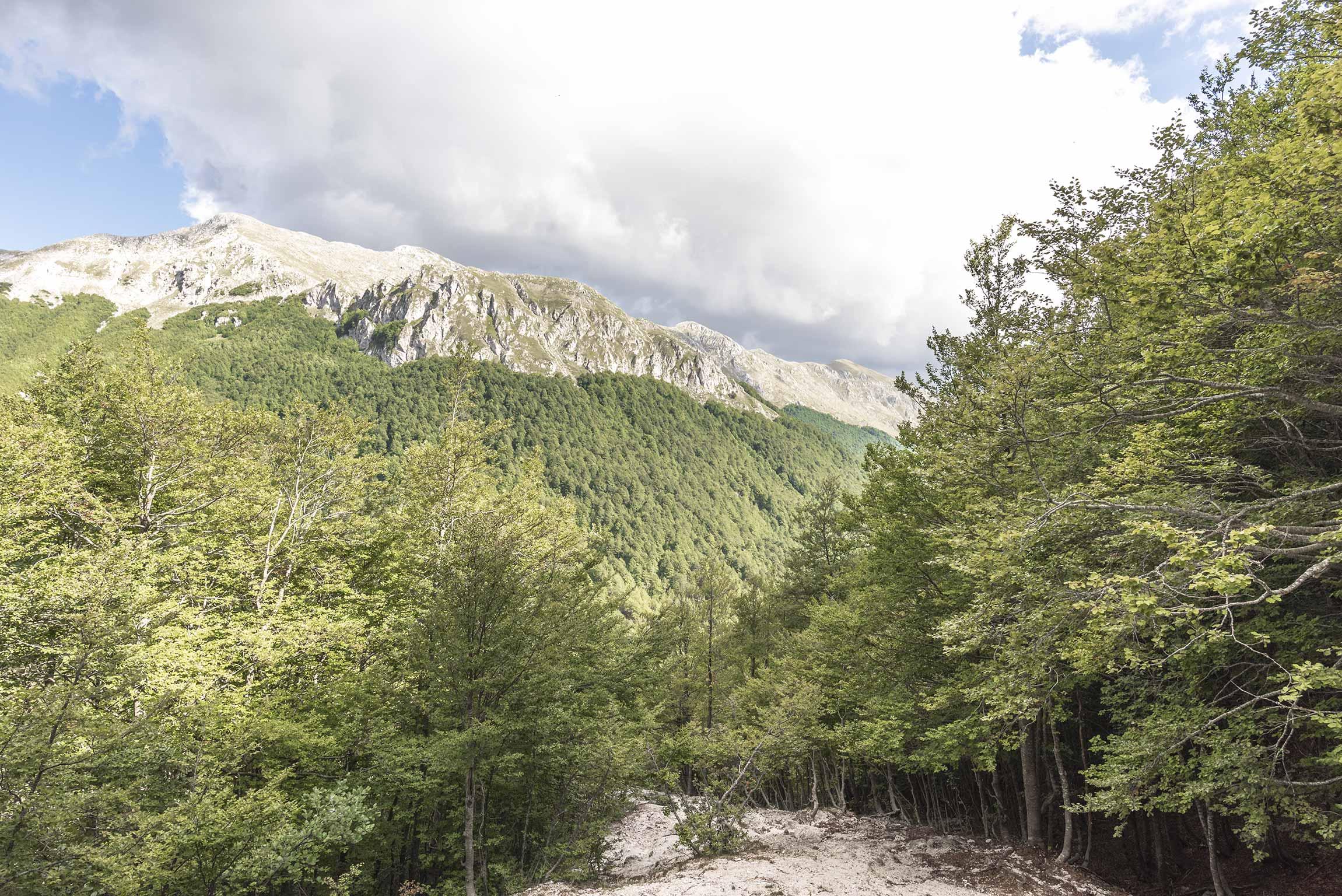 Panorama dal Valico Passaggio dell'Orso, Val Fondillo
