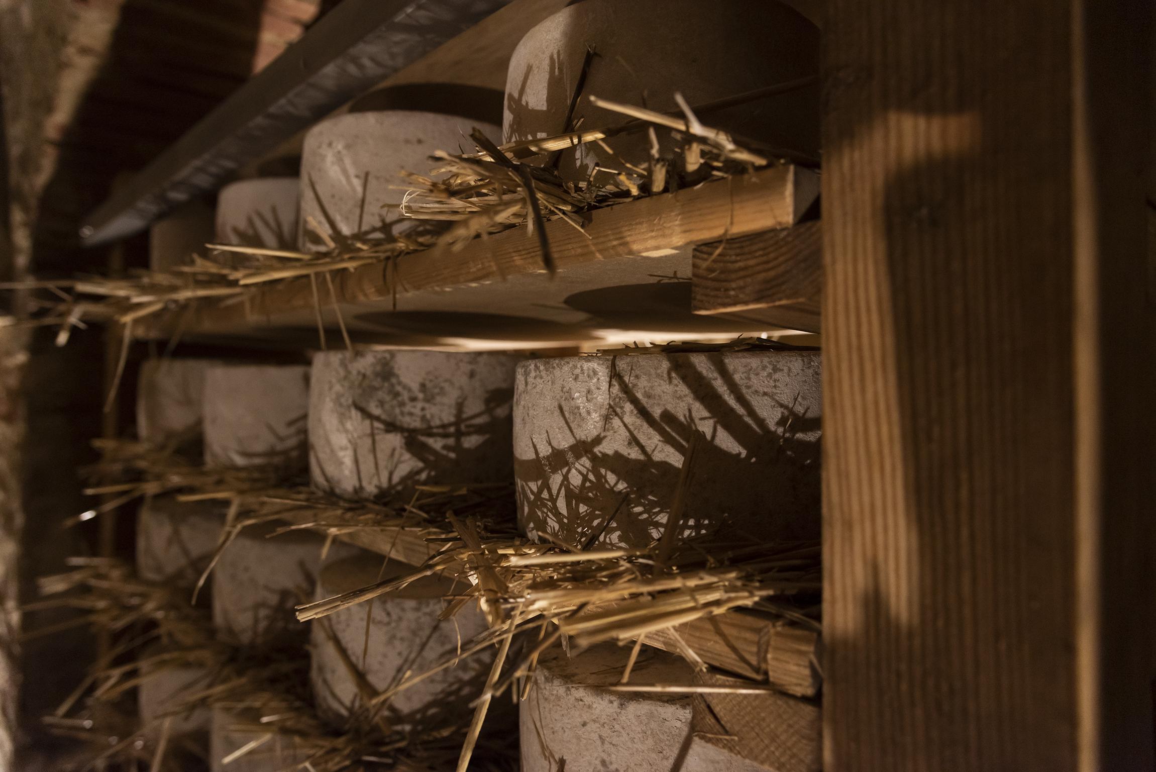 Weekend in Toscana: formaggio ai tre latti del Caseificio Busti