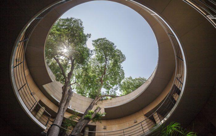 Entrata del Jardín Botánico di Valencia