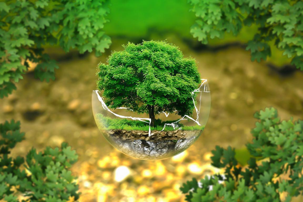 Regali eco-friendly, 5 idee per viaggiatrici sostenibili